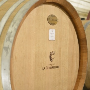 Les célèbres fûts Stockinger du Domaine de La Cendrillon. / Stockinger's barrel in La Cendrillon's cellar.